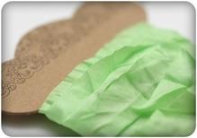 Шебби ленточка, свежая зелень, 10мм, 1м