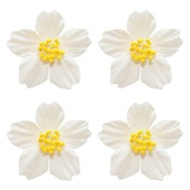 Цветы франжепани, 4 шт, белые