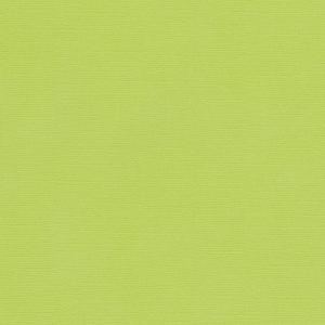 Кардсток текстурированный Салатовый, 30,5*30,5 см