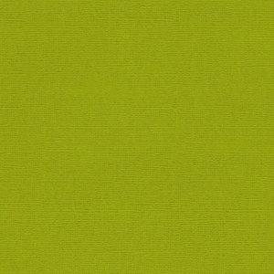 Кардсток текстурированный ТЕМНО-ОЛИВКОВЫЙ, 30,5*30,5 см,