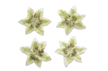Цветы лилии, набор 4 шт, диам 5 см, светло-зеленый