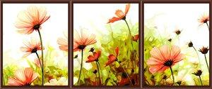 Картина по номерам Цветущие космеи 40х50х3см