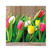 Салфетка бумажная 33*33 см (3 слоя) Colorful Tulips