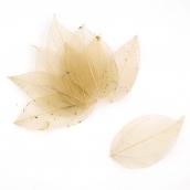 Скелетированные листочки  цв. бежевый