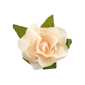 """Цветы """"Персиковое суфле"""", 12 цветочков"""