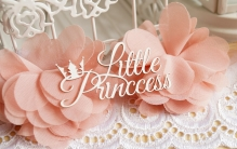 Little Princcess