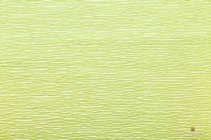 Бумага гофрированная Италия 50см х 2.5м 140г/м2  салатовая