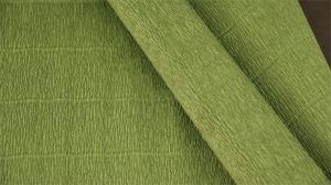 Бумага гофрированная Италия 50см х 2.5м 140г/м2  зеленый