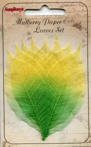 Скелетированные листочки из бананового дерева, набор 8 шт, желто-зеленые