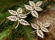 Листья остролиста