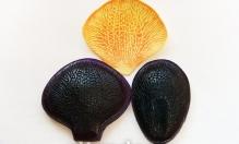 Молд  Лепесток, орхидея, арт.0469 6х6см, 6х4см