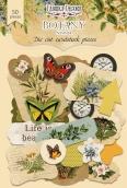 """Набор высечек, коллекция """"Botany summer-1"""""""