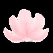 """Набор перьев макси """"Розовые"""""""