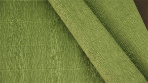 Бумага гофрированная Италия 50см х 2,5м 140г/м2 цв.991 травяной