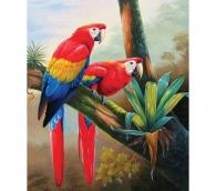 Алмазная живопись Попугаи 30*40см