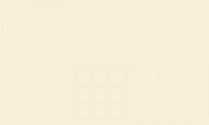 Фетр листовой жесткий 2мм 20х30см 100% ПЭ уп.2 шт цв.молочный