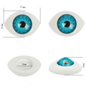 Глаза круглые выпуклые цветные 17мм цв.голубой