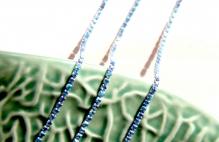 Стразовая лента на серебре 2мм цв.сапфир с покрытием 1 ярд
