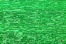 Бумага гофрированная  Италия  50см х 2,5м 180г/м2 зеленая