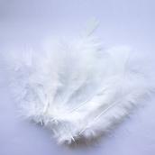 Перья Белые 12 см, 20 шт.