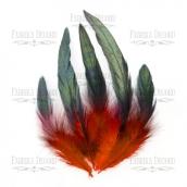 """Набор перьев """"Красный с черным"""""""