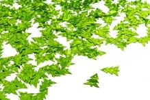 Пайетки россыпью Ideal  11х16мм цв.010 елка салатовый уп.25г